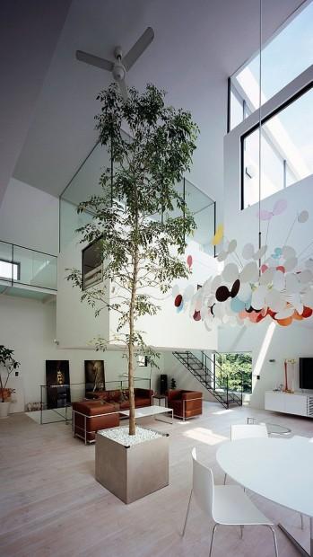 lambo sala de estar (5)