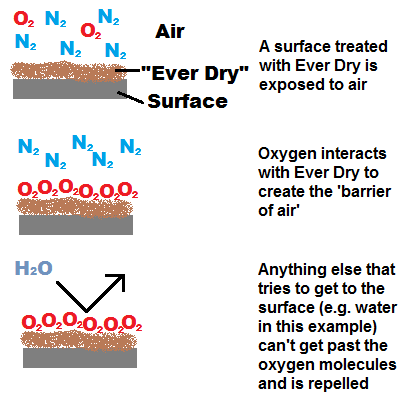 ever-dry-action