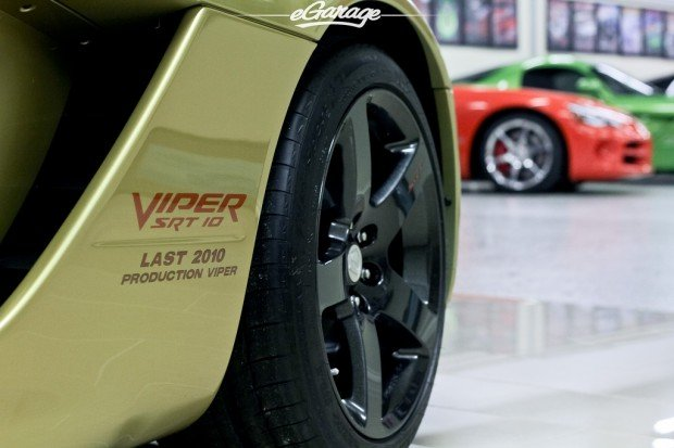 viper-collection (8)