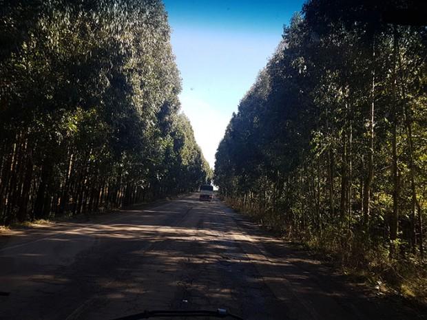 Na estrada da volta, muitas paisagens bonitas