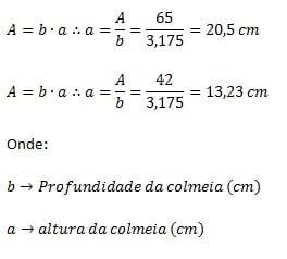 Fórmula X