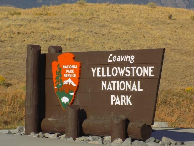 yellowstone7