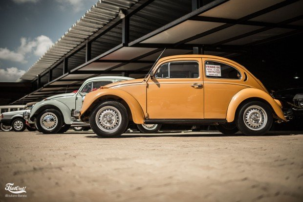 vw-klassik-flatout-box54-5
