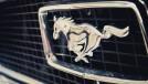Mustang, corcel, pinto e bronco: conheça os cavalos que batizam os carros da Ford