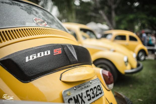 lindoia-antigos-flatout-gt40--177