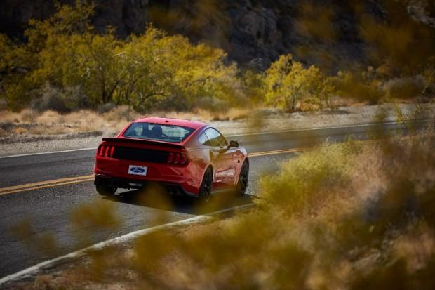 Mustang_03