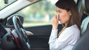 """Os chineses não gostam do cheiro de carro novo – e a Ford quer acabar com ele """"cozinhando"""" os carros"""